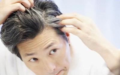 Седые волосы облагородить