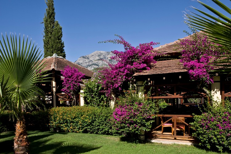 Club Med_Palmiye 3 bungalows